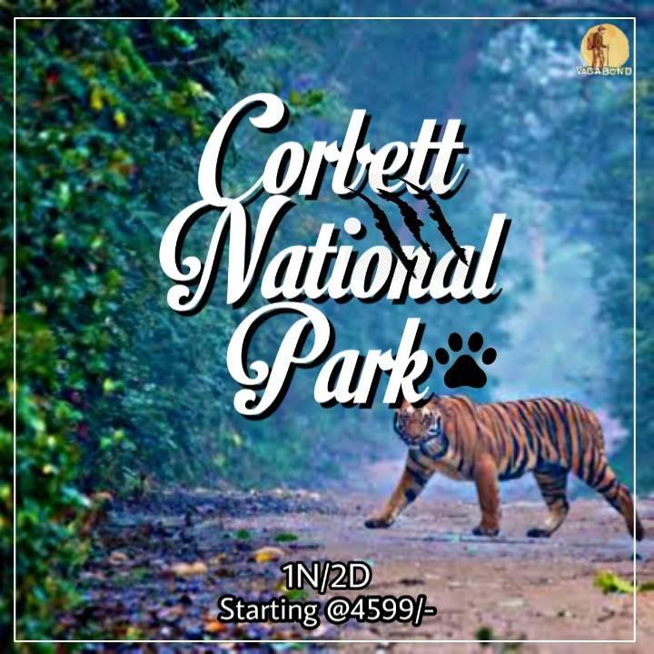 vagabond-upcomingtrip-corbett-park