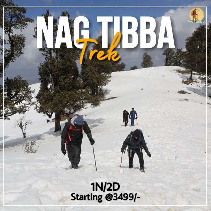 vagabond-upcomingtrip-nagtibba